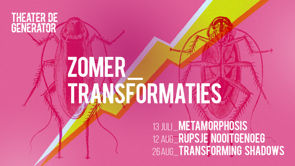 ZOMER_TRANSFORMATIES